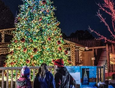 Christmas tree at Winter on the Mountain in Glenwood Springs